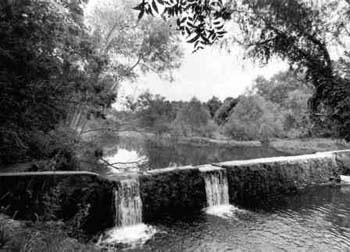 black and white photo of creek with small waterfall
